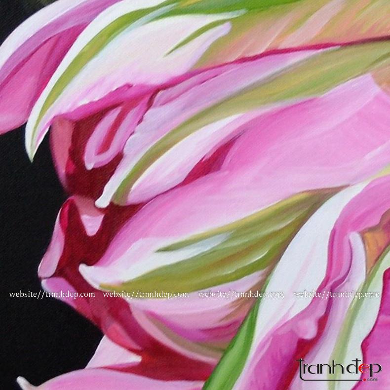 Cận cảnh những cánh hoa tulip dịu dàng, lộng lẫy