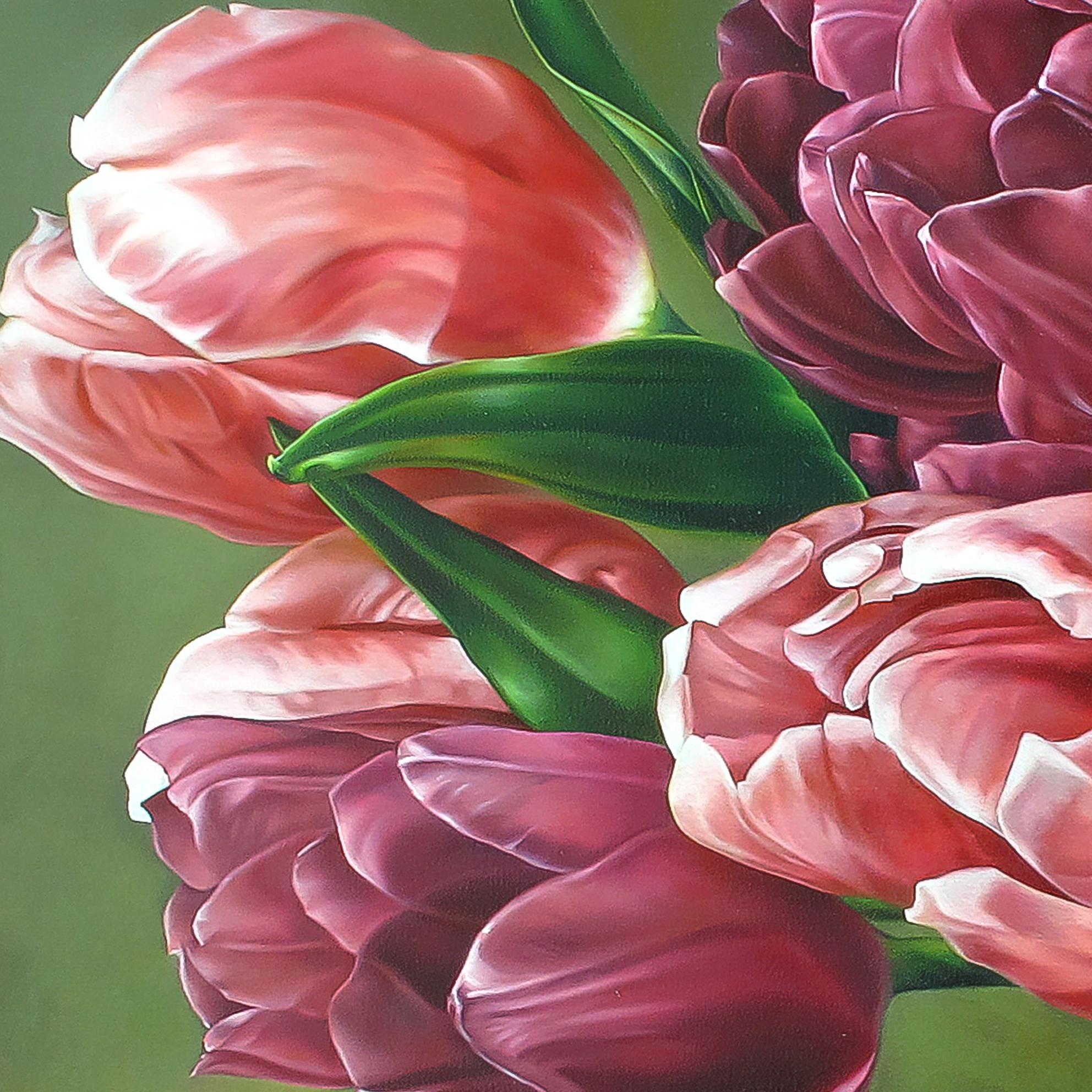 Cận cảnh từng cánh hoa tulip dịu dàng