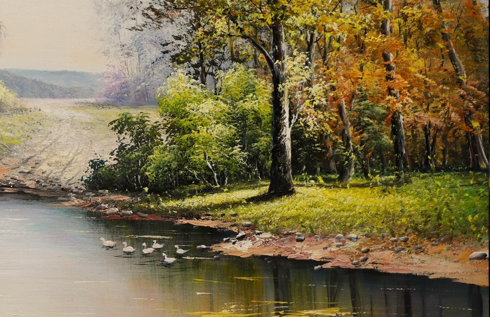 phong cảnh khu rừng mùa thu