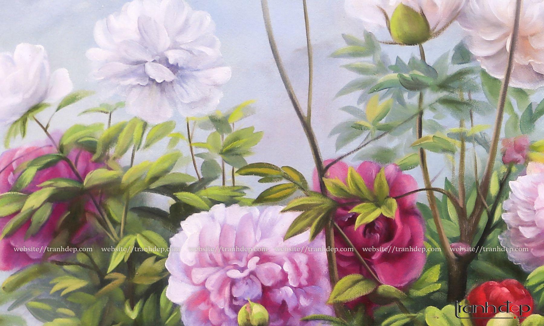 Cận cảnh những cánh hoa mẫu đơn mịn màng, lộng lẫy