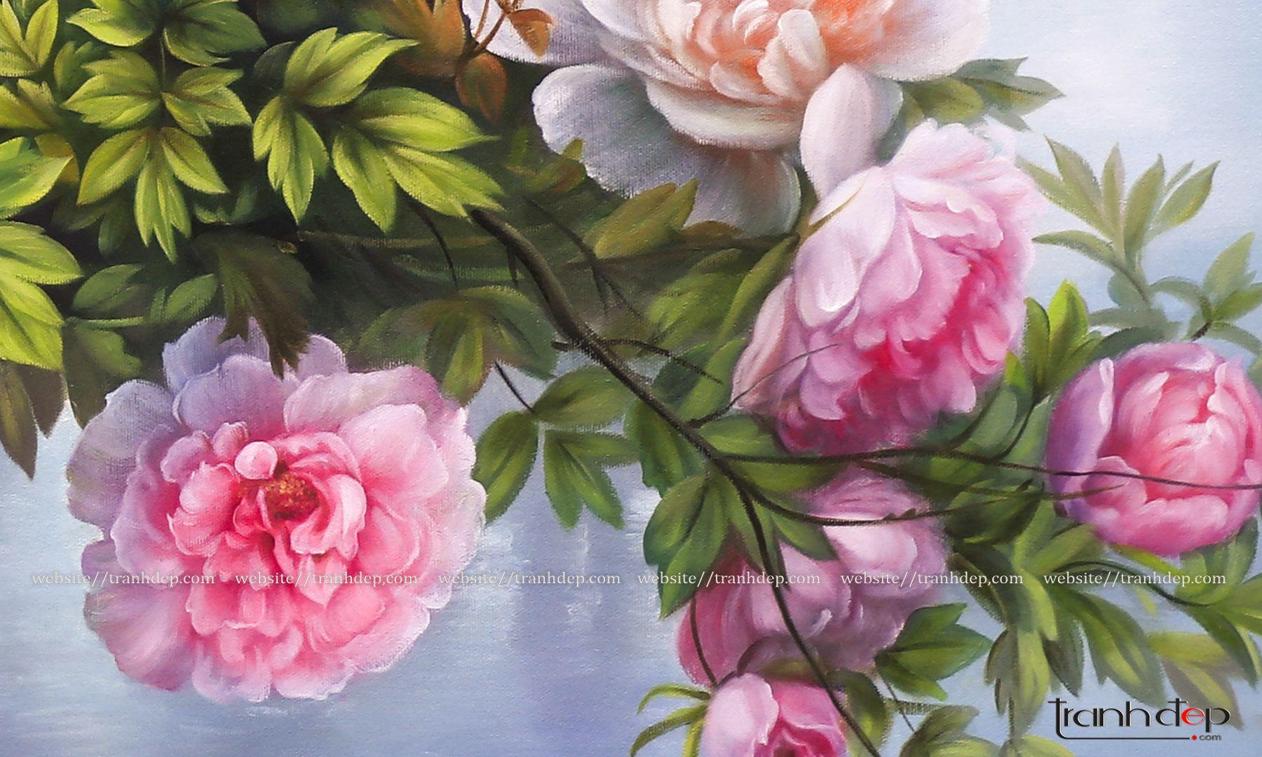 Cận cảnh những bông hoa mẫu đơn tuyệt sắc