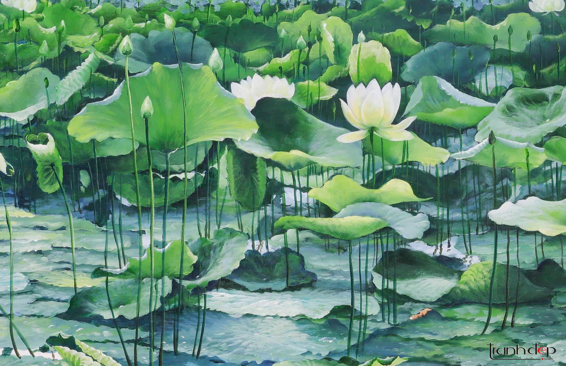 Tranh Đầm sen đẹp - Hoa sen trắng dịu dàng- TRANHDEP.COM
