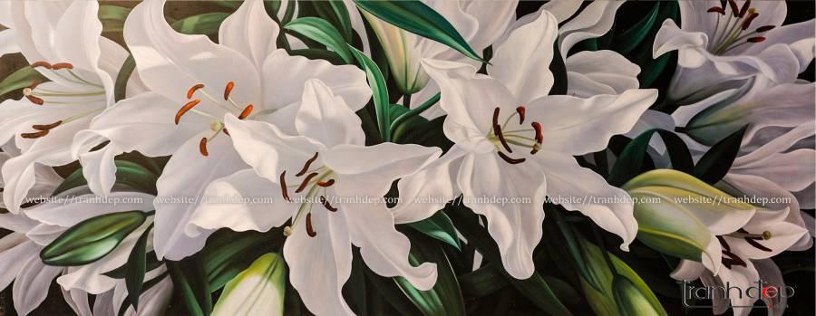 Hoa ly cực đẹp
