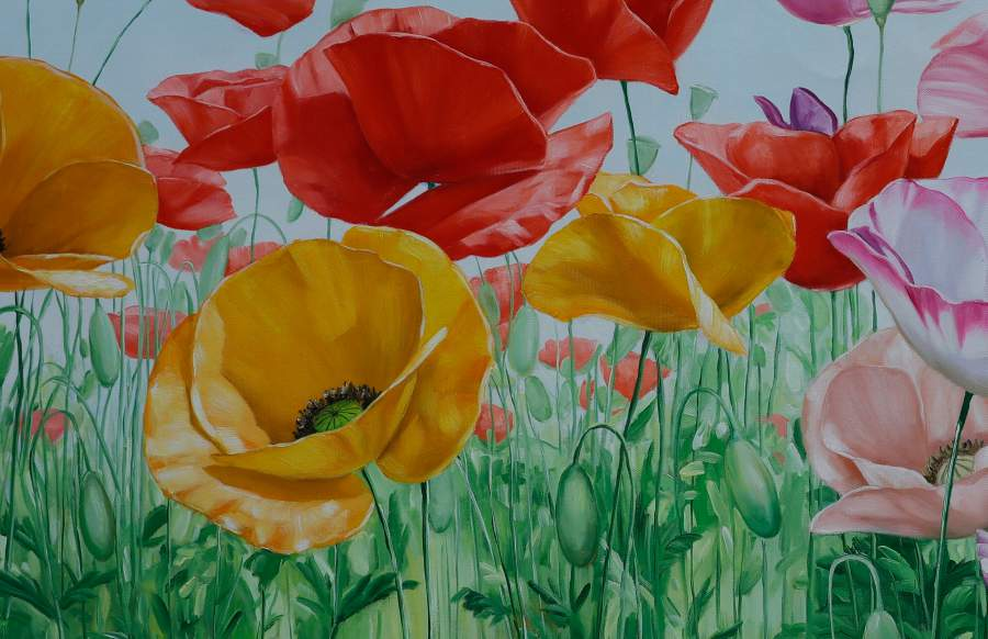 tranh hoa popy dep diem cho khong gian phong khach sang trong