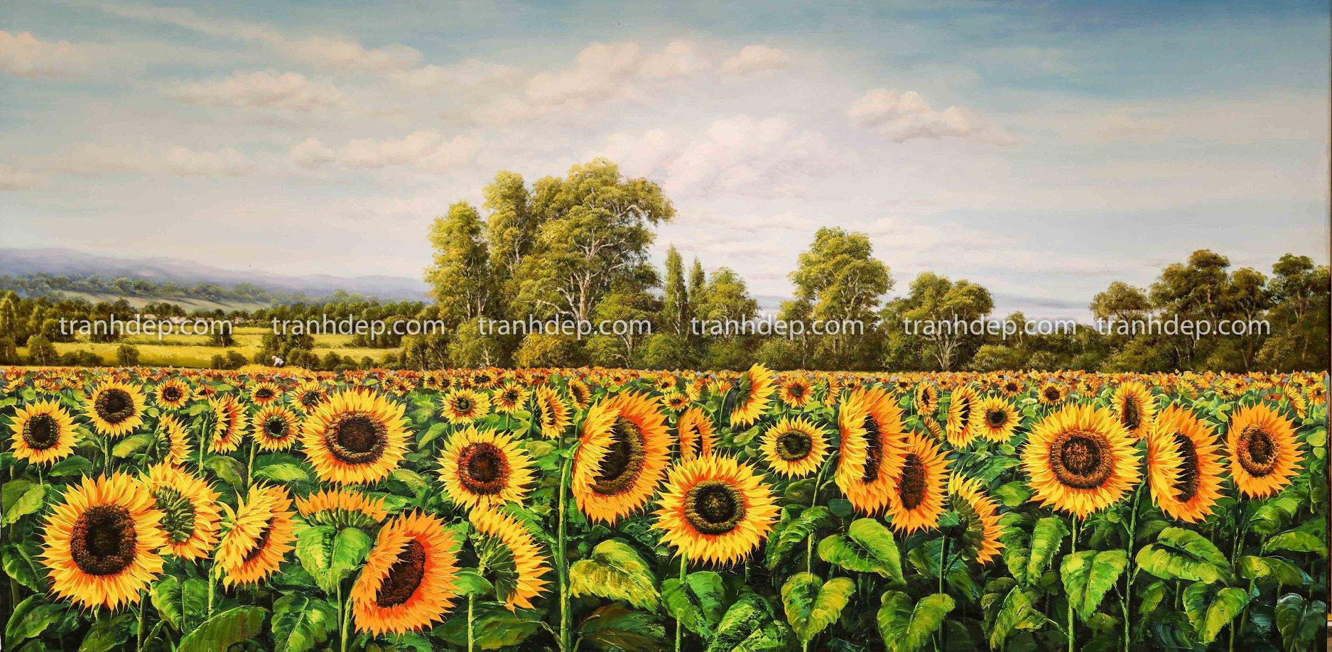 Treo tranh hoa hướng dương tăng cường vượng khí phong thuỷ