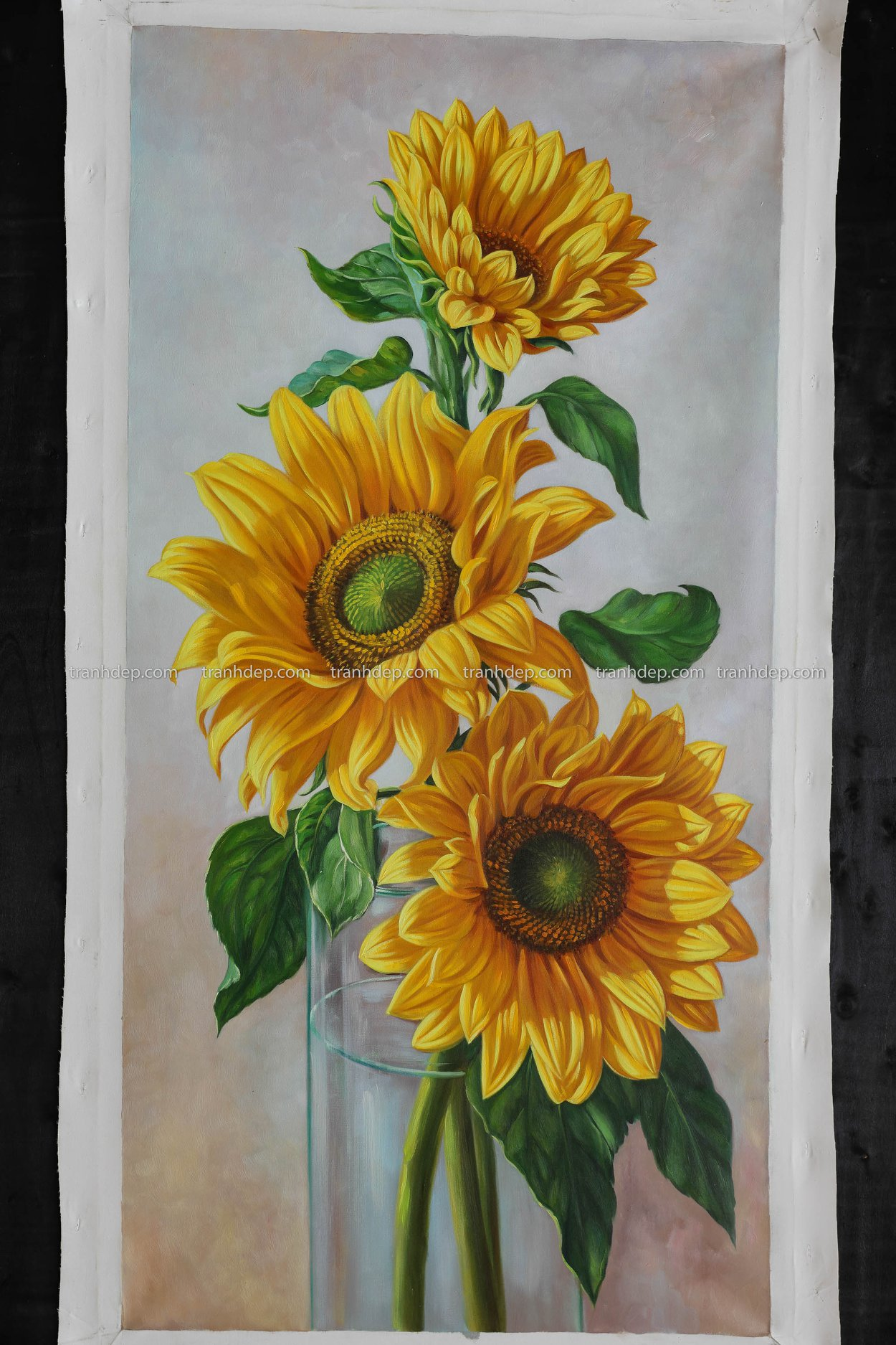 hoa hướng dương tranh vẽ