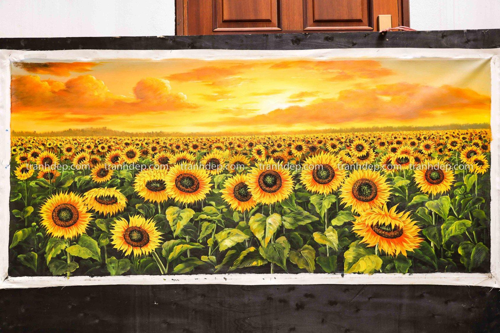 hoa hướng dương rực nắng